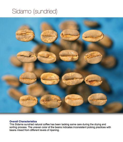 Snapshot 2011-04-20 16-45-57